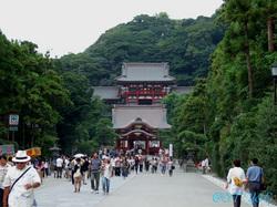 鶴岡八幡宮さえも。。。.JPG